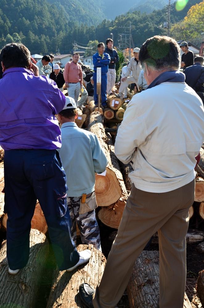 原木市場 競り風景