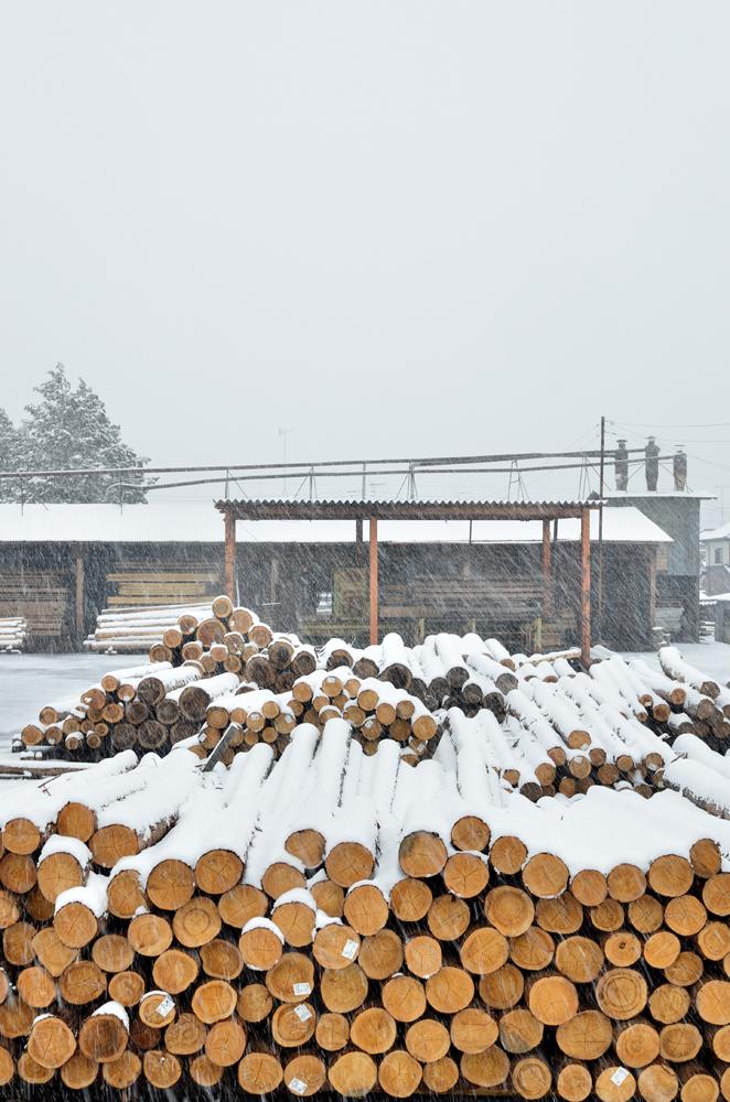原木置場の積雪